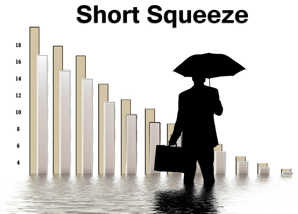 short squeeze cover